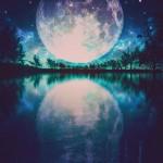 新月の願い