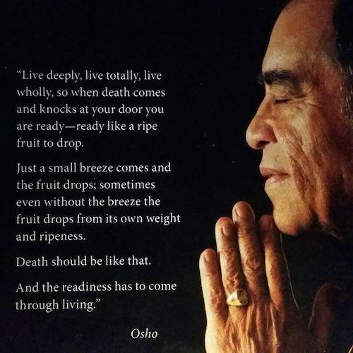 深く全体的に生きれば・・・VeereshとOshoのことば